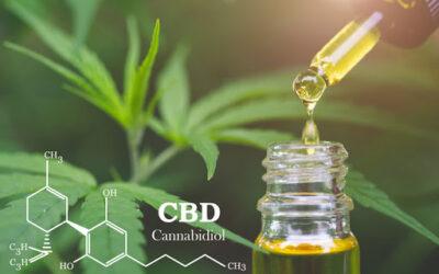 Calculer Votre Dosage de CBD (Fleur ou Huile)