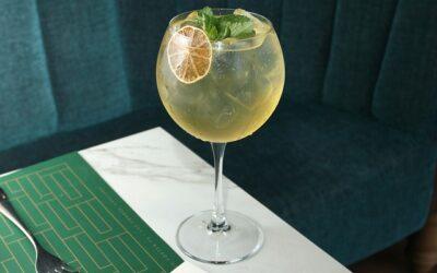 Gin Tonic au CBD (recette facile aromatique)